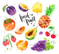 Watercolor colorful illustration set of fresh fruit Royalty Free Stock Photo