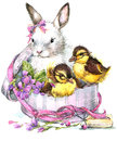 Watercolor cute bunny and little bird, gift and flowers background Royalty Free Stock Photo