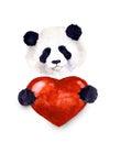 Watercolor cute panda