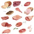 Watercolor drawing meat