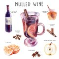 stock image of  Watercolor drawing. mulled wine recipe set, sketch