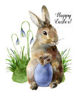 Watercolor Easter card with bunny, snowdrops and colored egg. Hand painted print with traditional symbols isolated on