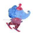 Watercolor elephant skiing