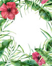 Watercolor exotic floral frame. Hand painted floral border with palm tree leaves, banana branch and hibiscus  on Royalty Free Stock Photo