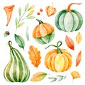 Watercolor fall leaves, branches,pumpkins etc