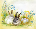 Watercolor Fauna Collection: Rabbit Royalty Free Stock Photos