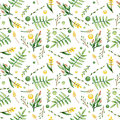 Watercolor Ferns And Yellow Flowers Seamless Pattern