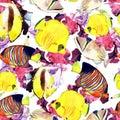 Watercolor fish. Sea fish set illustration