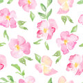 Watercolor floral background with pink wild roses