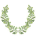 Watercolor floral border with maidenhair fern leaves. Hand painted floral wreath with branches, leaves of fern isolated