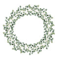 Watercolor floral border with silver dollar eucalyptus leaves. Hand painted floral wreath with branches, round leaves