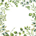 Peony flowers, sakura, feathers. Seamless floral pattern. Watercolor