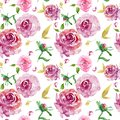 Watercolor Floral seamless pattern with burgundy roses with gold leaves and pink rose buds