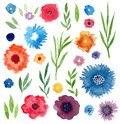Watercolor floral set. Isolated flowers and leaves for invitations, wedding, birthday decoration or stationery design. Royalty Free Stock Photo