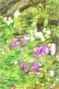 Watercolor Flowers Of Sweet Pea Garden Beautiful