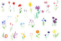 Watercolor flowers tender set