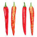 Watercolor fresh red chili pepper cut in half, seed isolated on white background, vector illustration, cooking