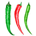 Watercolor fresh red, green chili pepper isolated on white background, hand drawn vector illustration, cooking