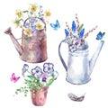Watercolor garden set of spring flowers