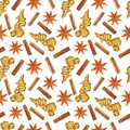 Watercolor ginger root, star anise, cinnamon, Hand drawn ginger illustration on white background, seamless pattern, Organ