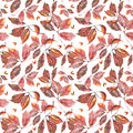 Watercolor grapes red leaves seamless pattern with dry autumn wild grape on white Stock Images