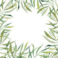 Watercolor green floral frame card. Hand painted border with bra Royalty Free Stock Photo