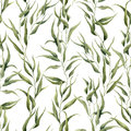 Watercolor green floral seamless pattern with eucalyptus leaves. Hand painted pattern with branches and leaves of eucalyptus isola