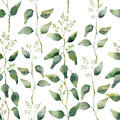 Watercolor green floral seamless pattern with flowering eucalyptus.