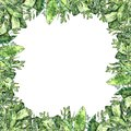 Watercolor greenery collection. Frame square backdrop