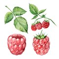 Raspberry watercolor set