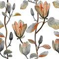 Watercolor hand drawn beautiful magnolia flower