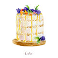 Watercolor hand drawn cake. dessert illustration on white background