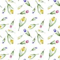Watercolor pattern of tulips