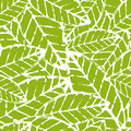 Watercolor hand drawn vector leaf seamless pattern. Abstract grunge green texture background. Nature organic illustration Royalty Free Stock Photo