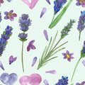 Watercolor hand painted nature floral seamless pattern with purple lavender flowers, green leaves and branches, pink petals and he