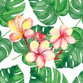 Watercolor hand painted nature tropical plants seamless pattern with green palm leaves and pink blossom plumeria flowers branch Royalty Free Stock Photo