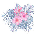 Watercolor hand painted tropical flower bouquet pink heliconia hibiscus frangipani and leaves of indigo palm monstera