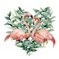 Watercolor heart with pink flamingo and eucalyptus leaves. Hand painted pink flamingo and leaves isolated on white