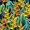 Watercolor heliconia pattern