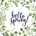 Watercolor Hello spring. Hand painted floral card with eucalyptus, fern and spring greenery branches isolated on white Royalty Free Stock Photo
