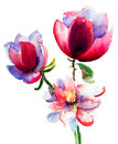 Watercolor illustration beautiful flowers Stock Photo