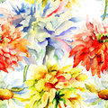 Watercolor illustration with beautiful flowers chrysanthemum seamless wallpaper Stock Photos