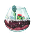 Watercolor illustration. Composition of succulents. Floral desig