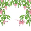 stock image of  Watercolor illustration of green leaves and pink flowers