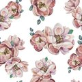 Watercolor illustration of hand painted seamless magnolia pattern. Floral design for cosmetics, perfume, beauty care products. Royalty Free Stock Photo