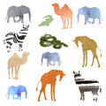 Watercolor illustration picture set of animals elephant, camel, giraffe, zebra, crocodile, snake. transparent watercolor different Royalty Free Stock Photo