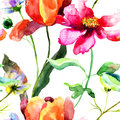 Watercolor illustration of tulip flower seamless pattern Stock Photos