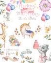 Watercolor isolated cute watercolor unicorn and sqirrel clipart. Nursery unicorns illustration. Princess unicorns poster. Trendy