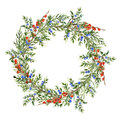 Watercolor juniper wreath with red berries. Hand painted evergreen branch with berries on white background. Botanical Royalty Free Stock Photo