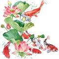 Watercolor Koi Carp And Lotus ...